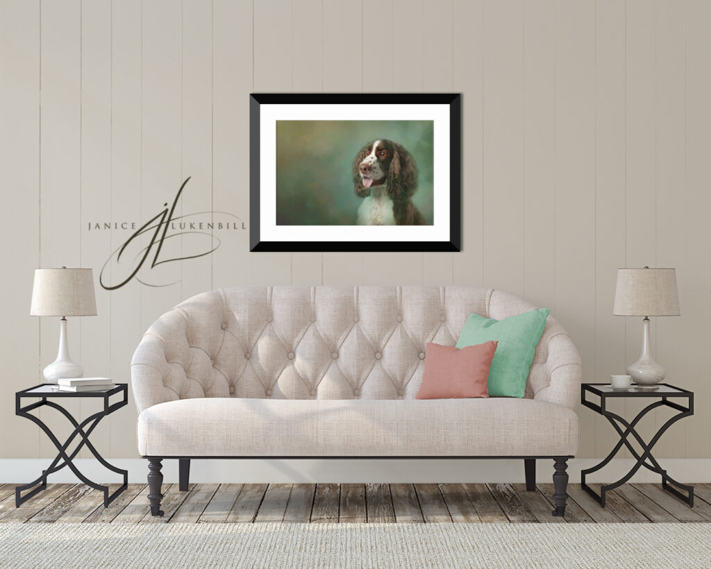 Living Room with English Springer art over the sofa