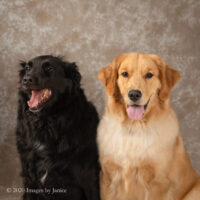 Portrait Session for 2 Sisters: Penny and Lucy